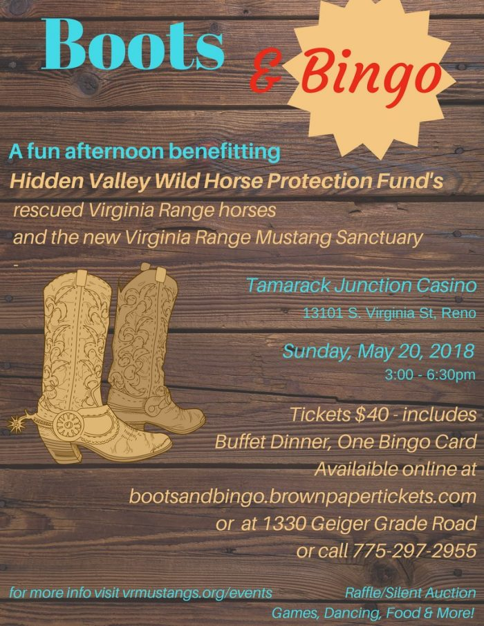 Wild Horse Fundraiser_May2018
