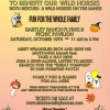 Wild Horse Fall Festival & BBQ