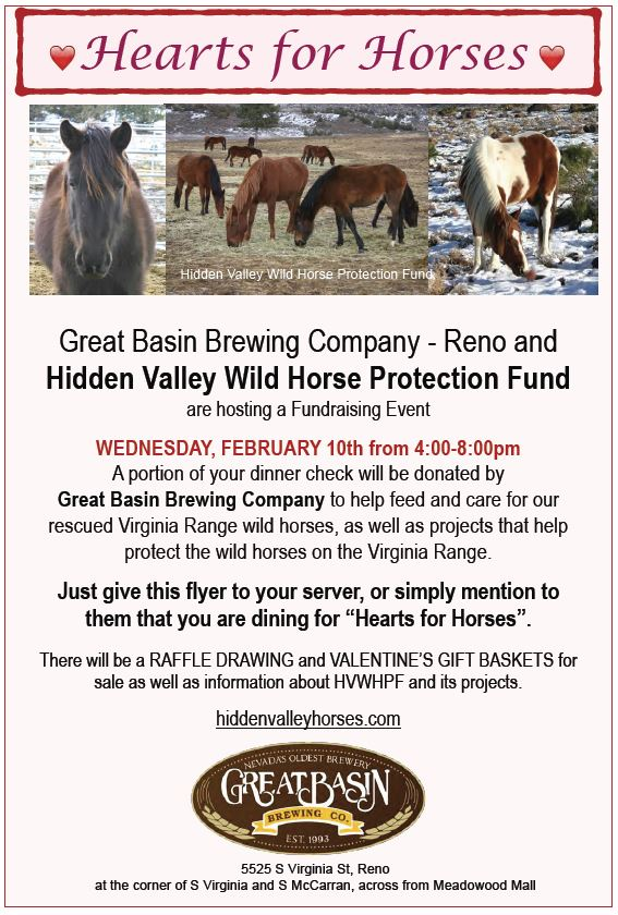 Hearts For Horses Fundraiser