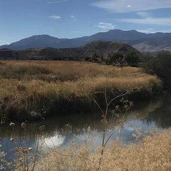 Rosewood Lakes Restoration